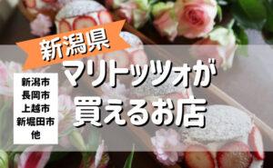 マリトッツォ 新潟
